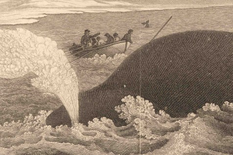 Interrogating the Art and Science of Whaling Journals - Oceans on Nautilus